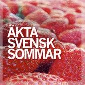 Äkta svensk sommar (NEW) von Blandade Artister