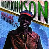 Reggae Feelings by Anthony Johnson