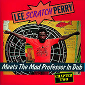 Lee Perry - Meets The Mad Professor by Lee
