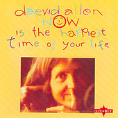 Now Is The Happiest Time Of Our Life by Daevid Allen