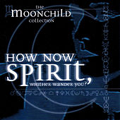 How Now Spirit, Whither Wander You? by Moonchild