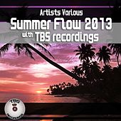 Summer Flow 2013 With Tbs Recordings by Various Artists