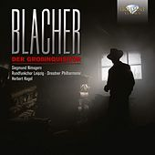 Blacher: Der Grossinquisitor by Various Artists