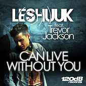 Can Live Without You di le Shuuk