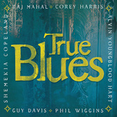 True Blues by Various Artists