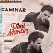 Caminar de Dani Martin