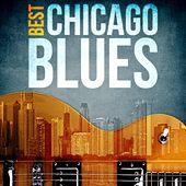 Best - Chicago Blues by Various Artists