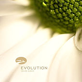 Evolution by RMB