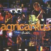 Faiddi (Live) von Agricantus