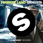 Gangsta de Promise Land