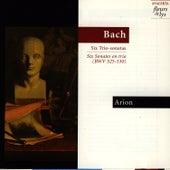 Six Trio-Sonatas (Bach) by Arion