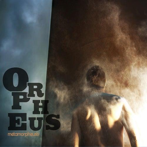 Metamorpheusis by Orpheus