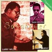 Sunshower by Larry Willis