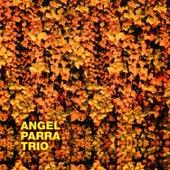 No Junta Ni Pega de Angel Parra Trio