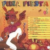 Pura Fiesta by Various Artists