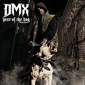 Year Of The Dog...Again (Clean) by DMX