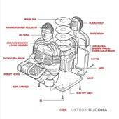 Jukebox Buddha by Various Artists