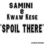 Spoil There by Samini
