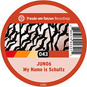My Name Is Schultz by Juno 6