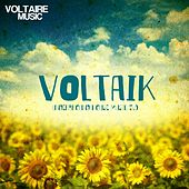 Voltaik 5.0 by Various Artists