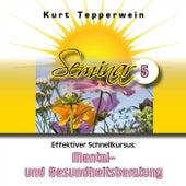 Effektiver Schnellkursus: Mental- und Gesundheitsberatung (Seminar Teil 5) by Kurt Tepperwein
