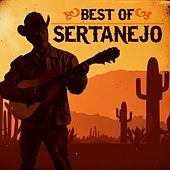 Best of Sertanejo von Various Artists