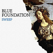Sweep de Blue Foundation