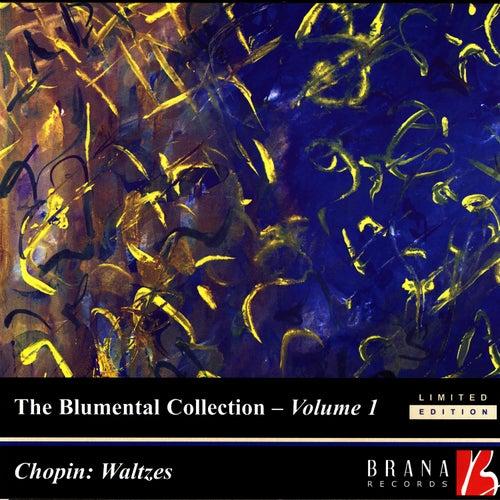 Waltz In B Minor, Op  69, No  2 (Chopin) by Felicja Blumental : Napster