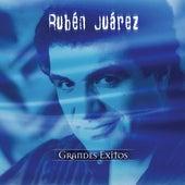 Coleccion Aniversario de Ruben Juarez