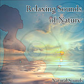 Relaxing Sounds of Nature by Natural Sounds
