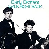 Walk Right Back by The Everly Brothers