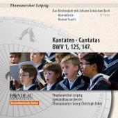 Das Kirchenjahr mit Johann Sebastian Bach - Marienfeste von Various Artists