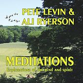 Meditations: Explorations of the Mind & Spirit by Pete Levin