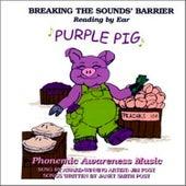 Purple Pig by Jim Post