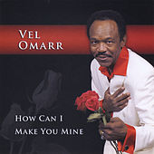 How Can I Make You Mine by Vel Omarr