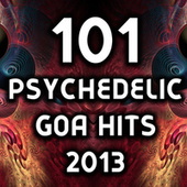 101 Psychedelic Goa Hits 2013 von Various Artists