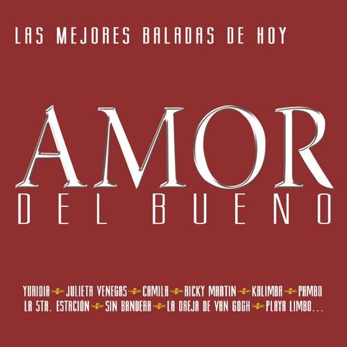 Amor Del Bueno 2 de Various Artists