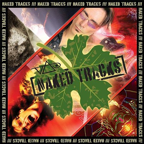 Naked Tracks Vol. 6 by Steve Vai