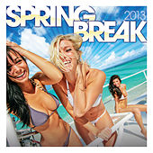 Spring Break 2013 de Various Artists