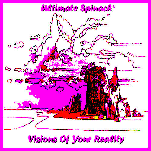 Visions of Your Reality by Ultimate Spinach