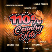 110% Country Hits von Various Artists