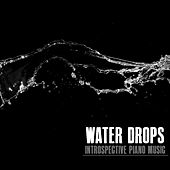 Water Drops Introspective Piano Music de Various Artists