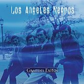 Serie De Oro by Los Angeles Negros