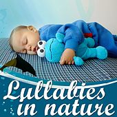 Lullabies in Nature: Sleeping With Dolphins by Mama Blu