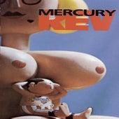 Boces de Mercury Rev