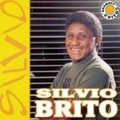 Grandes Exitos by Silvio Brito