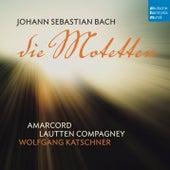 Bach: Die Motetten de Lautten-Compagney