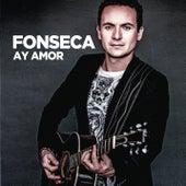Ay Amor de Fonseca