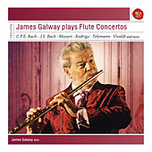 The Great Flute Concerto Edition de Various Artists