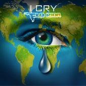 I Cry de Flo Rida